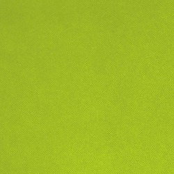 Intissé / Non-tissé aspect tissus Vert Anis