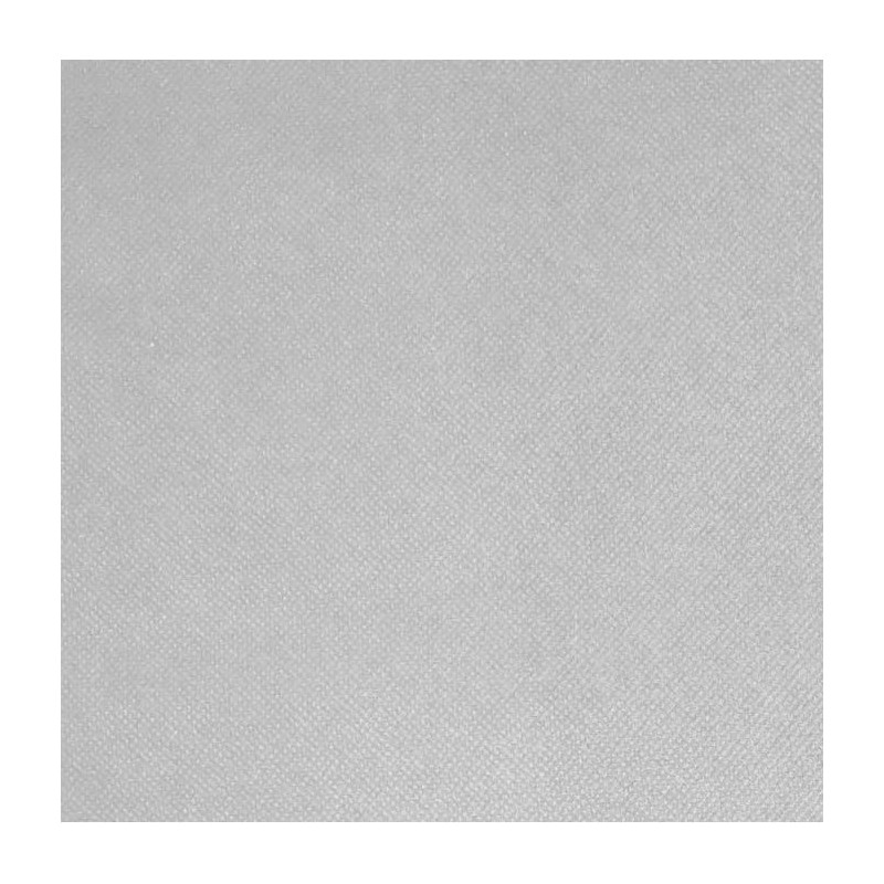 Intissé / Non-tissé aspect tissus Blanc