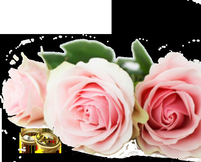 Tissus pour vos mariages et cérémonies de noces